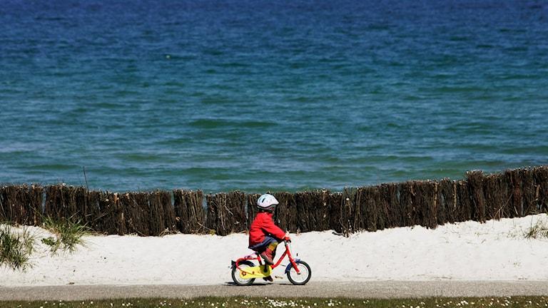 Barn på cykel. Foto: Heribert Proepper/TT