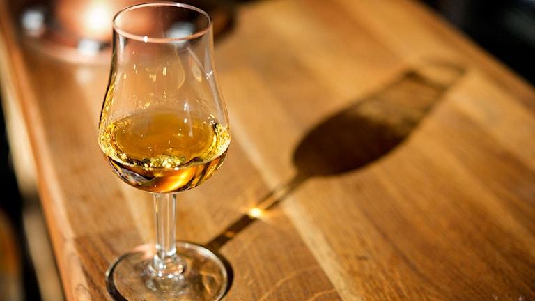 Ett glas med whisky. Foto: Jessica Gow/TT.