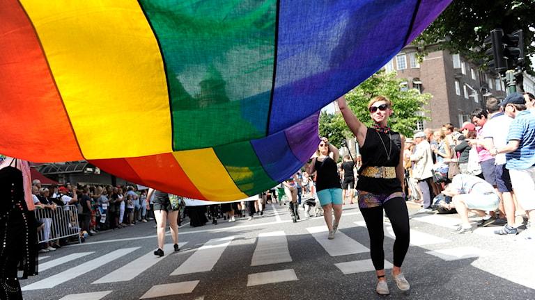 Regnbågsflagga vid Stockholm Pride. Arkivbild: Erik Mårtensson/TT.