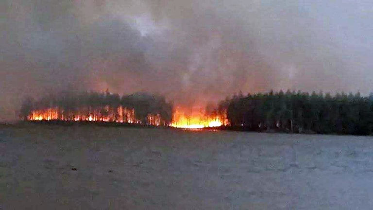 Dramatiskt vid Öjesjön. Foto: Ann Lindholm.