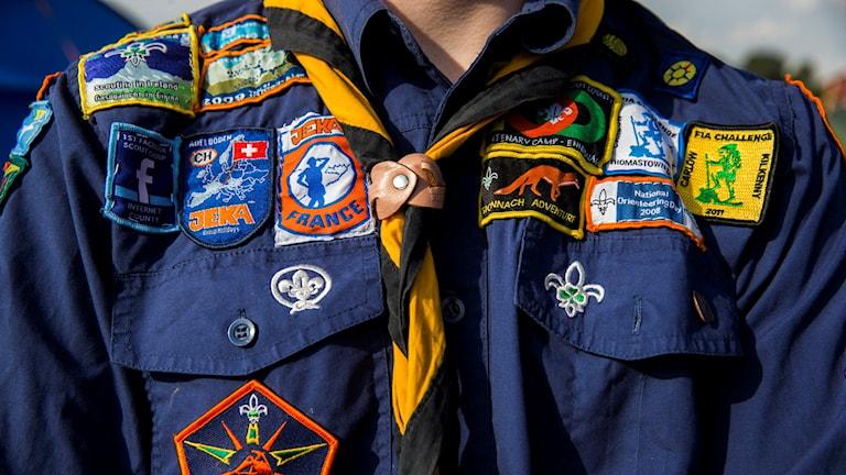 Scout. Foto: Berit Roald/TT.