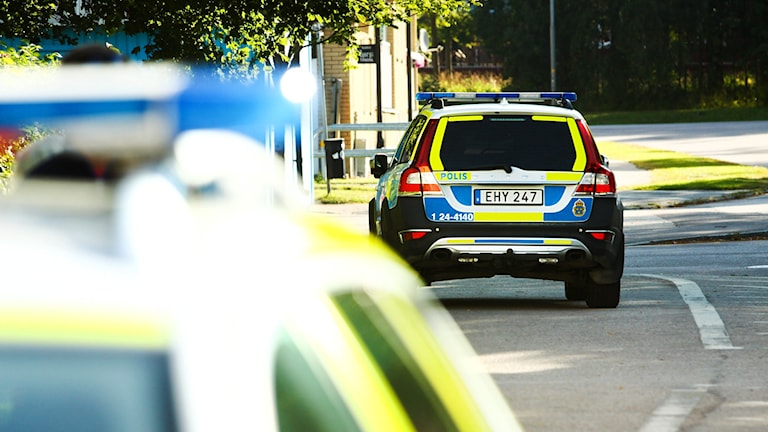 Polisbilar vid insats. Foto: Daniel Gustafsson/Sveriges Radio.