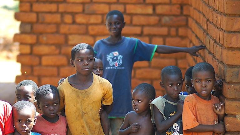 Barn i Tanzania. Foto: Världens barn.
