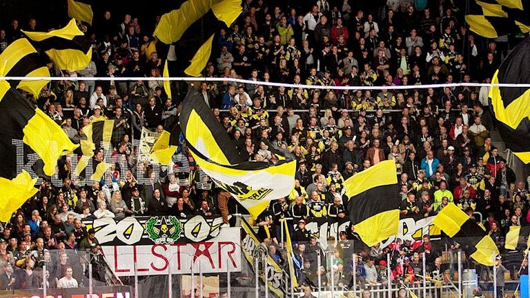 VIK Hockeys supportrar. Foto: Daniel Gustafsson/SR.