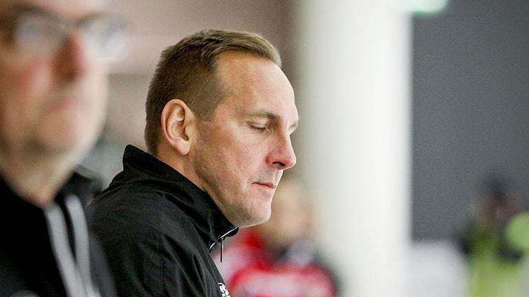 Michael Carlsson, tränare VSK Bandy.