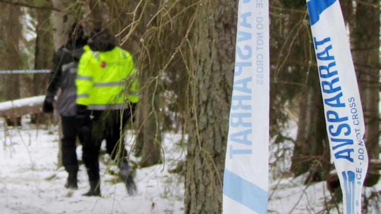 Avspärrningar mot skogen på Ängsö. Foto: Patrik Åström/Sveriges Radio.