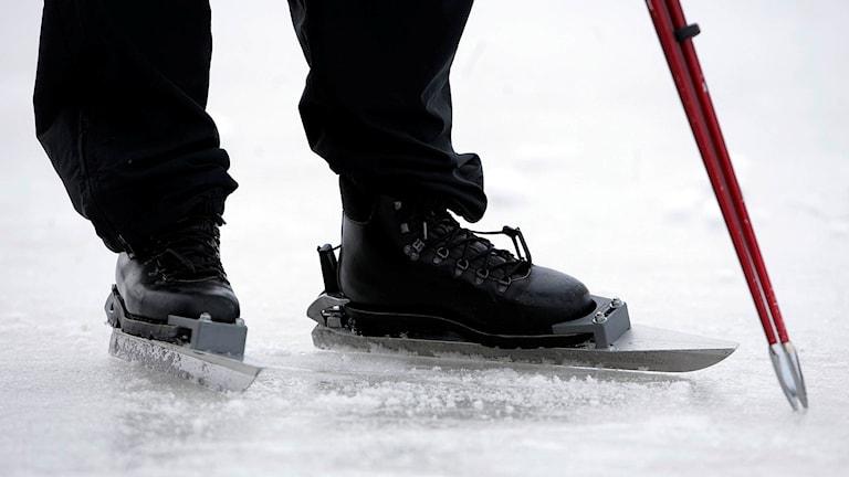 En långfärdsskridskoåkare provar isen med en ispik Foto Fredrik Sandberg/TT.
