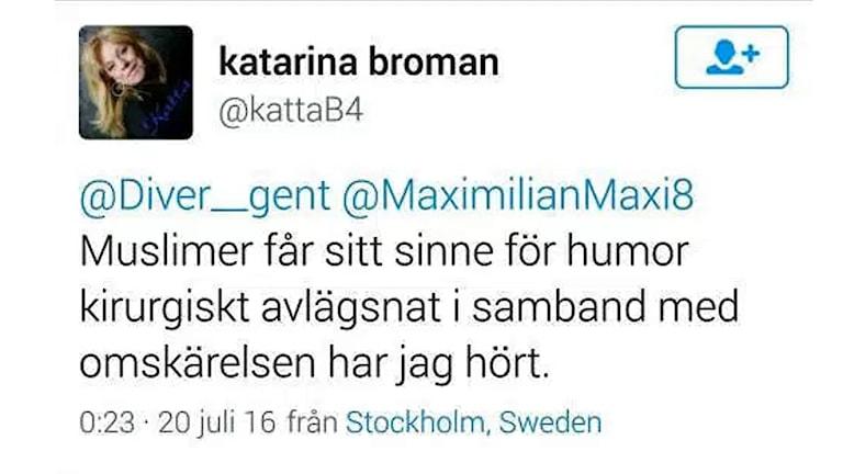 """Skärmdump från bloggen """"Inte rasist men..."""" med kommentar av Katarina Broman (SD) i landstinget Västmanland."""