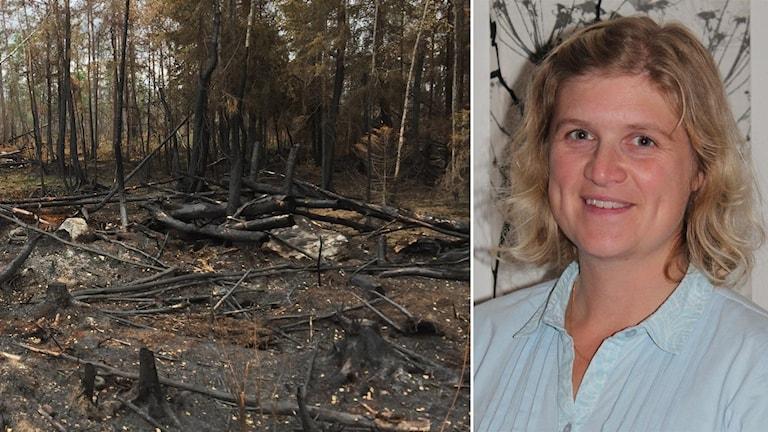 Jenny Stendahl, distriktschef vid Skogsstyrelsen i Uppsala-Västmanlands distrikt.