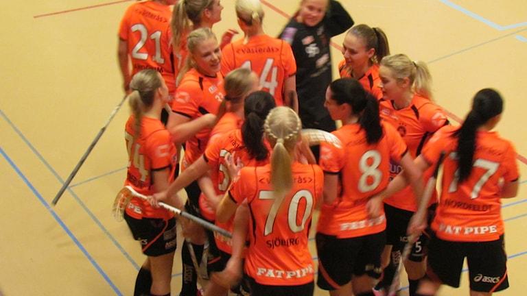 Västerås Rönnby. Foto: Anna Ökvist/Sveriges Radio.