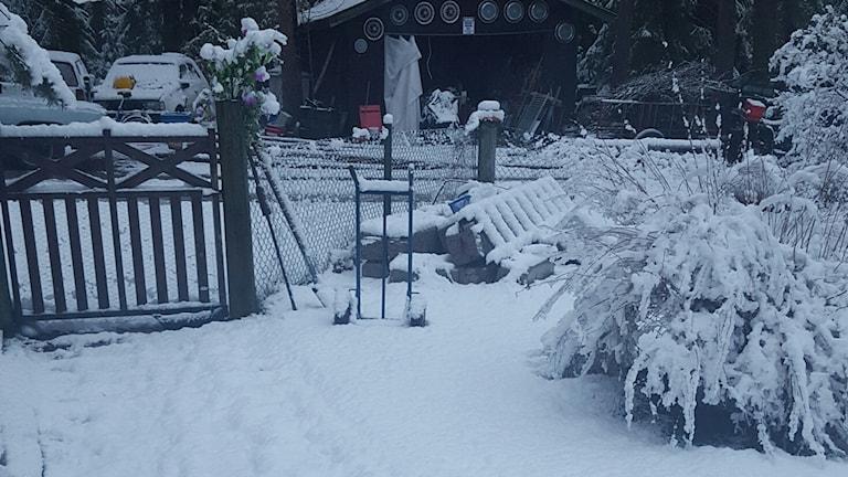 Så här mycket snö hade det kommit i Tärnsjö vid 5.30-tiden i morse.