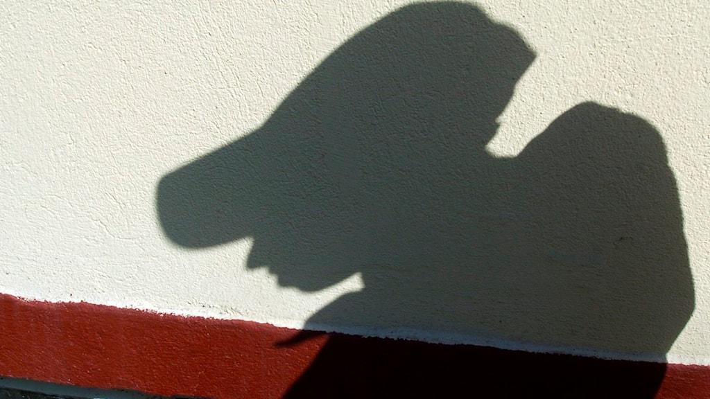 Skugga av barn visas på en vägg. Foto: Lars Pehrsson / SvD / TT.