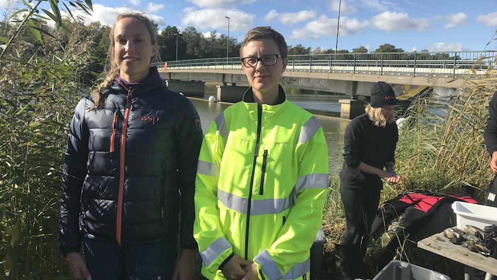 Nybygge av Björnöbron