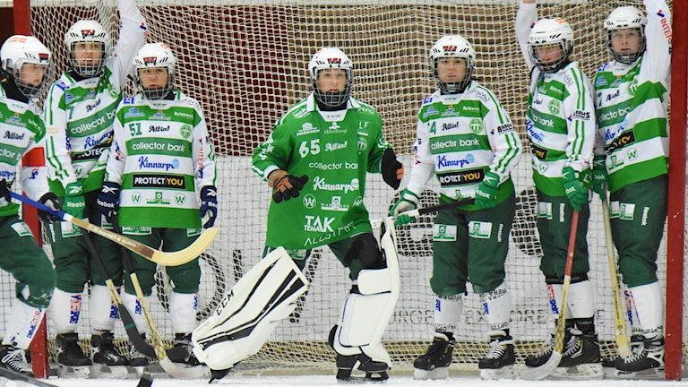 VSK Bandy damer
