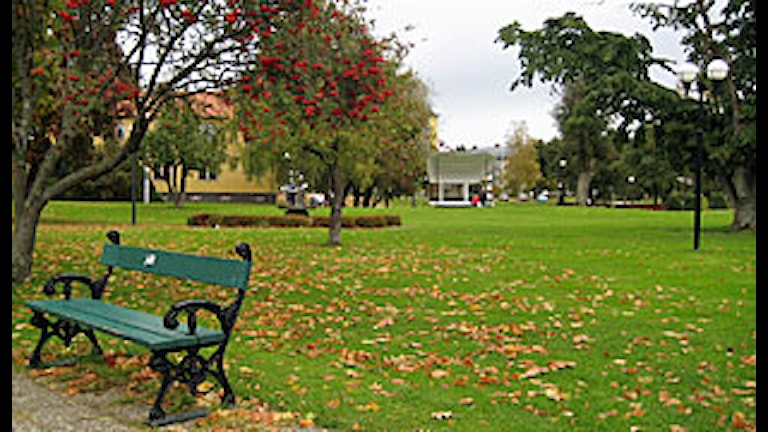 Vilhelminaparken i Fagersta.