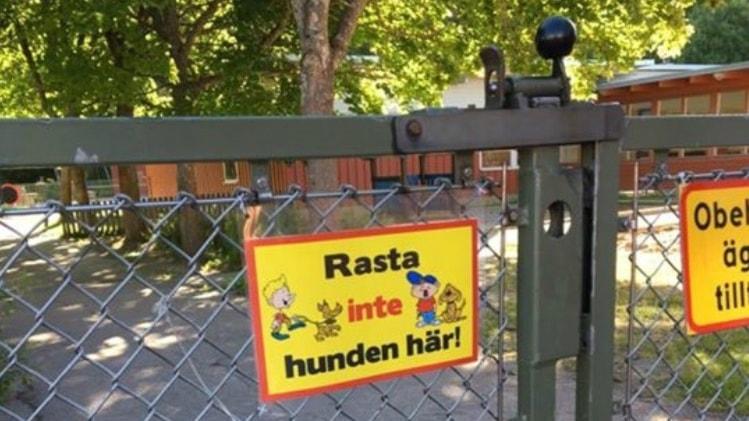 Hundägare använder förskolans tomt som hundrastgård.