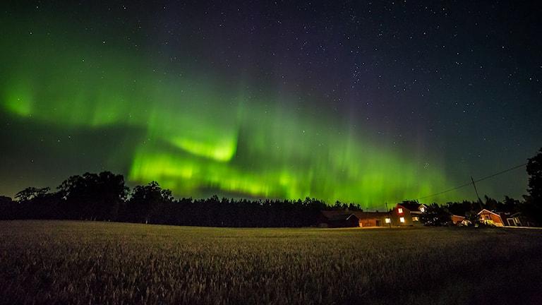 Fantastiskt norrsken över Västmanland - P4 Västmanland  68188ba1e47db