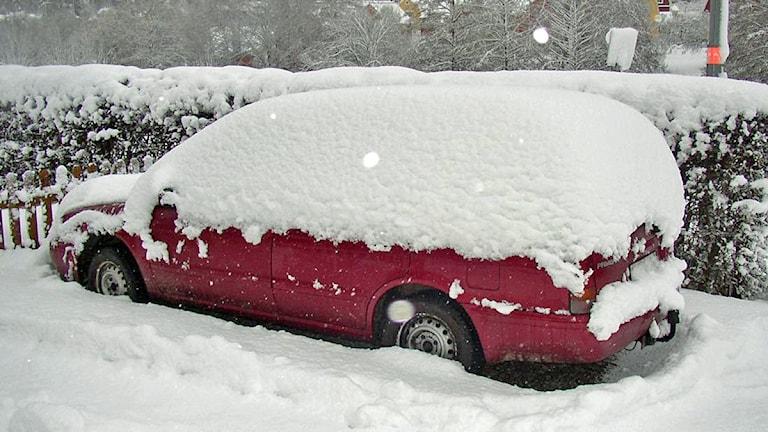 Insnöad bil