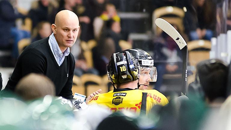 Tony Zabel VIK Hockey