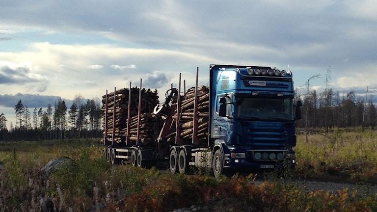 Här lämnar Mellanskogs sista stockar skogsbrandsområdet.