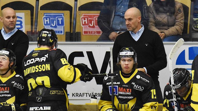 VIK Hockeys tränare Tony Zabel och Christer Olsson.