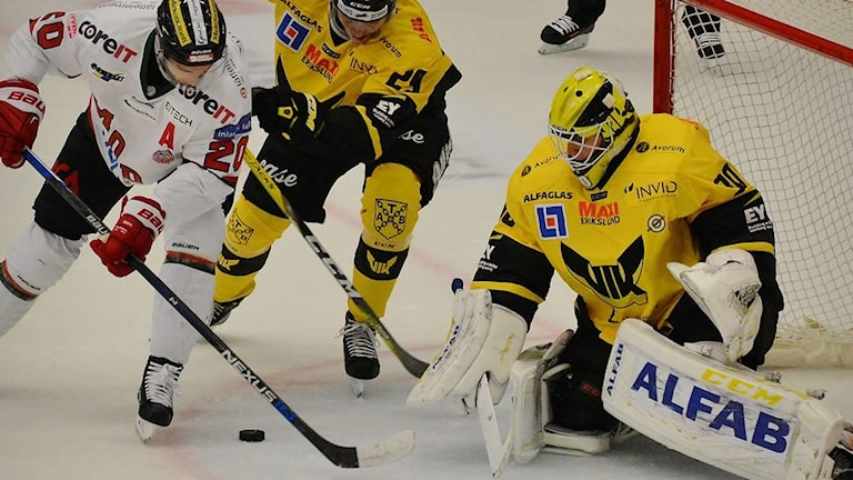 VIK Hockeys målvakt Henrik Lundberg.
