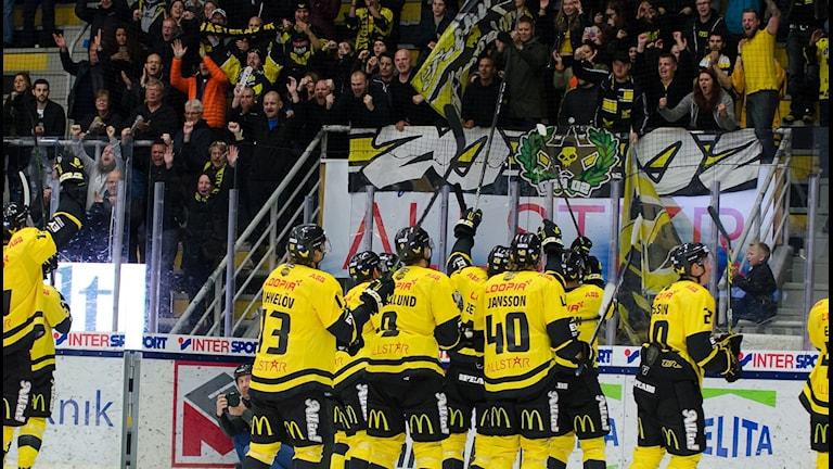 VIK Hockey firar med fansen