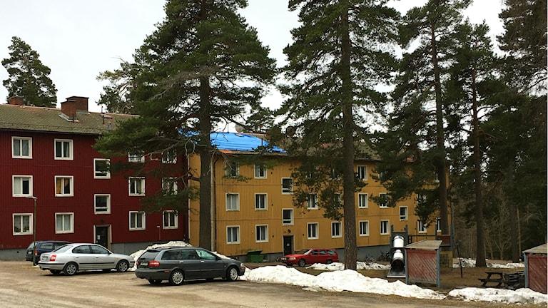Bolagshagen i Kärrgruvan.