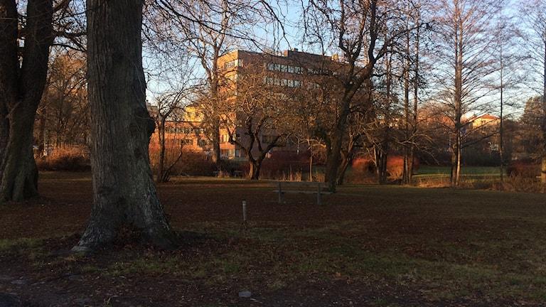 Parken vid länsstyrelsen i Västerås.