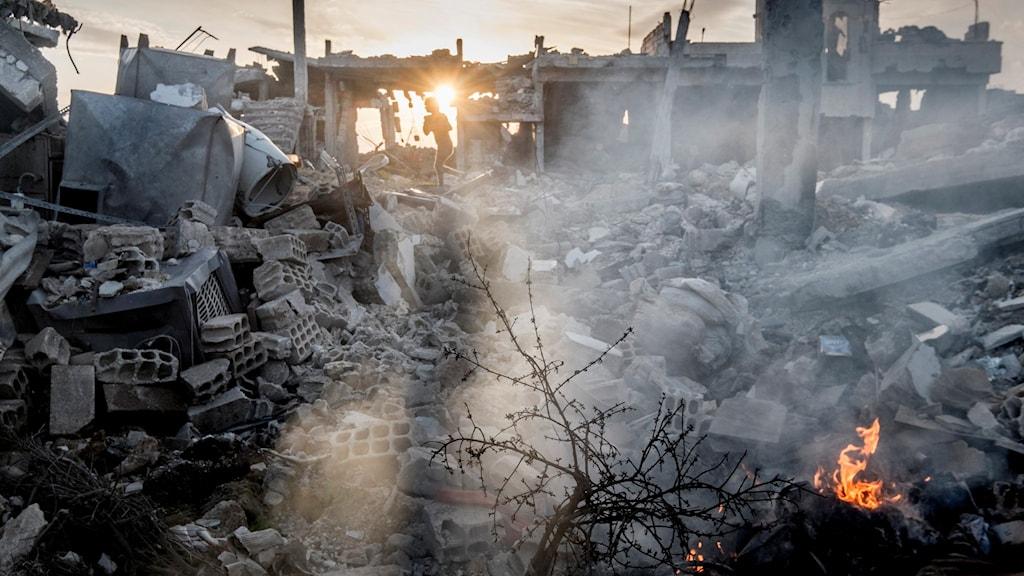 Barn leker i ruinerna i Kobane i Kurdistan, Syrien som attackerades av IS.  Foto: Magnus Hjalmarson Neideman/TT