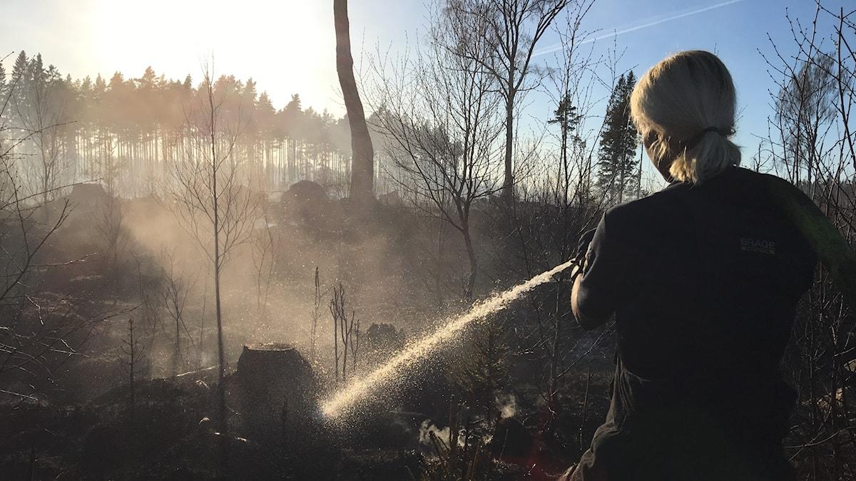 Brandmannen Sandra Holmberg släcker skogsbranden i Illersätra.