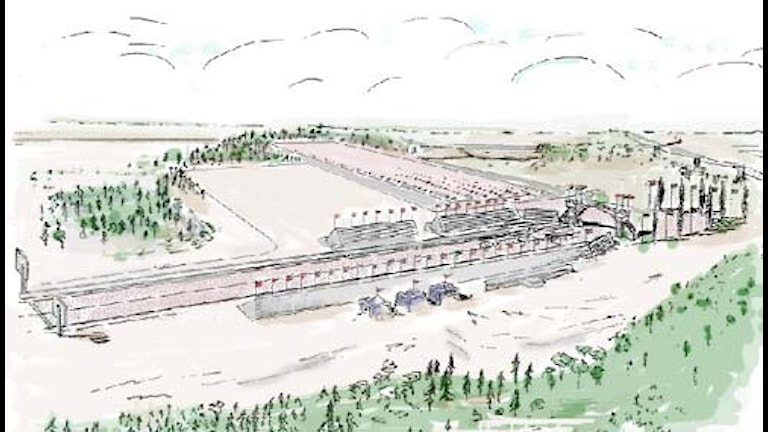 Viking Raceway Grafik: Hans Johansson