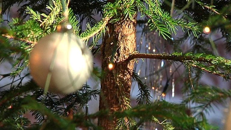 Julgran med liten belysning och en stor guldkula. Foto:Karin Markhede/Scanpix.