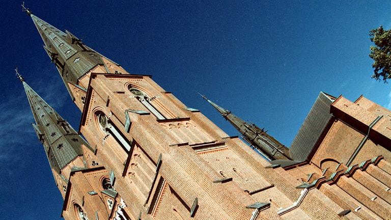 Domkyrkan i Uppsala. Foto: Fredrik Persson/SCANPIX