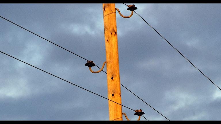 Telefonledning (arkivbild). Foto: Hasse Holmberg / Scanpix
