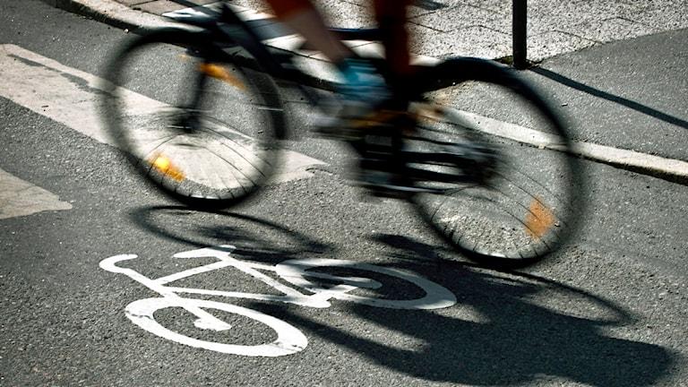 Cyklist på cykelbana. Foto: Claudio Bresciani/Scanpix