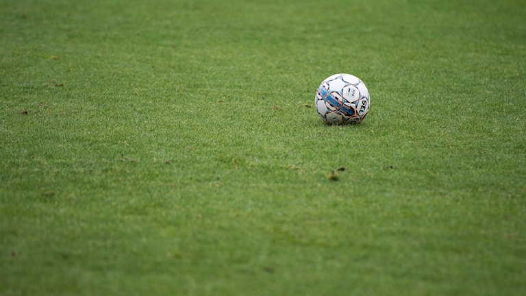 Fotboll på gräs. Genrebild.