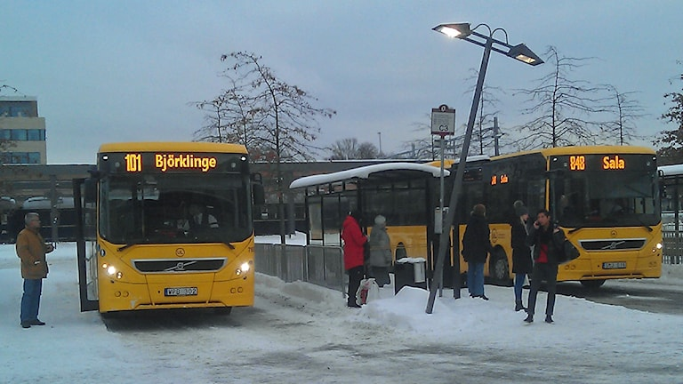 UL-bussar. Foto: August Bergkvist / SR
