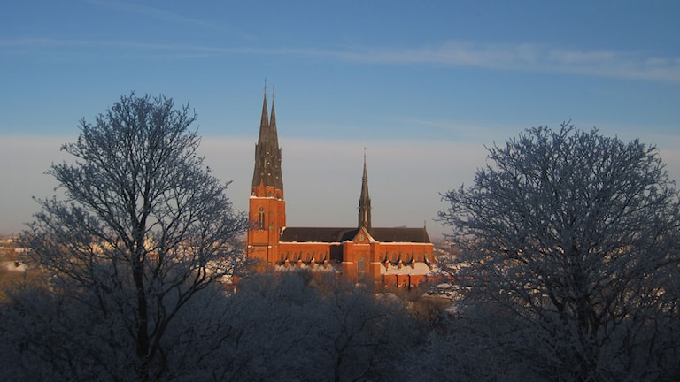 Uppsala domkyrka i vinterskrud. Foto: Per Enerud/Sveriges Radio.
