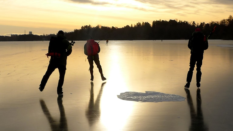 Skridskoåkare. Foto: Lars Pehrson / Scanpix