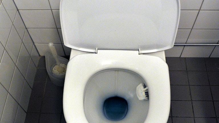 Toalett. Foto: Hasse Holmberg / SCANPIX