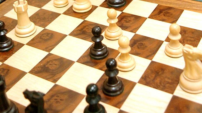 Schackbräde. Foto: G. Daniel Lopez/AP/Scanpix