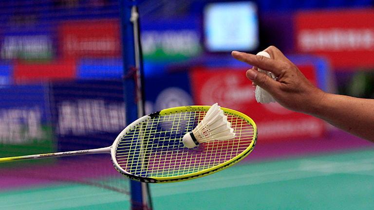 Badminton (arkivbild). Foto: Christophe Ena / Scanpix