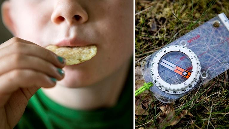 sdlta769116 chips kompass
