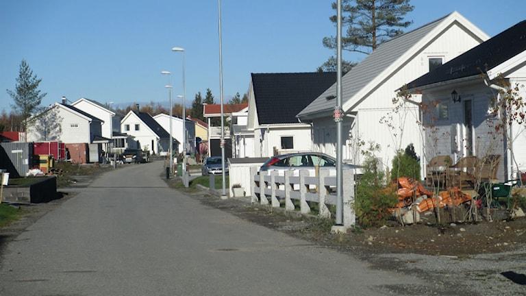 Villasamhället Alsike i Knivsta kommun. Foto: Martin Hult/SR