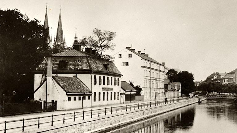 I huset i närmast till vänster i bild låg Rasbiologiska institutet i Uppsala. Foto: TT/Upplandsmuseet