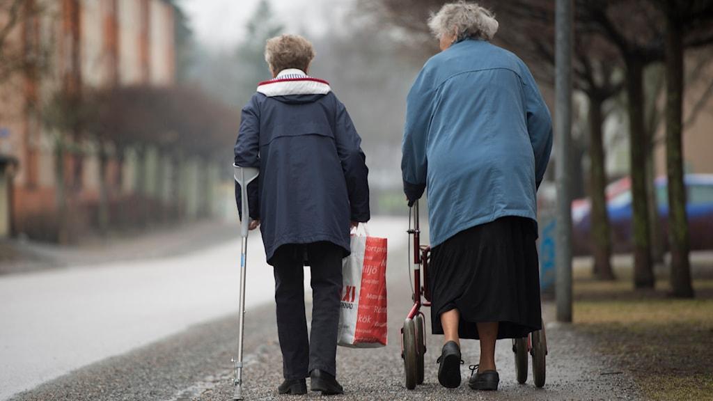 Äldre kvinnor på promenad (arkivbild). Foto: Fredrik Sandberg/TT