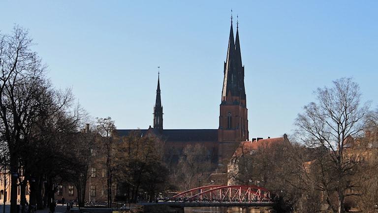 Uppsala domkyrka. Foto: Erik Thyselius/Sveriges Radio