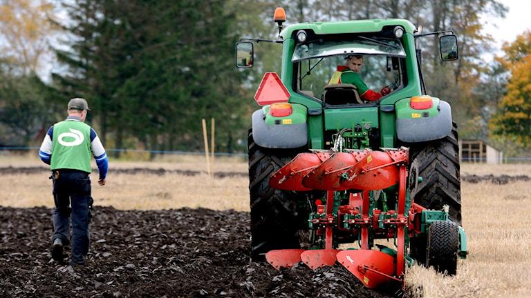 Plöjning med traktor (arkivbild). Foto: Johan Nilsson/TT