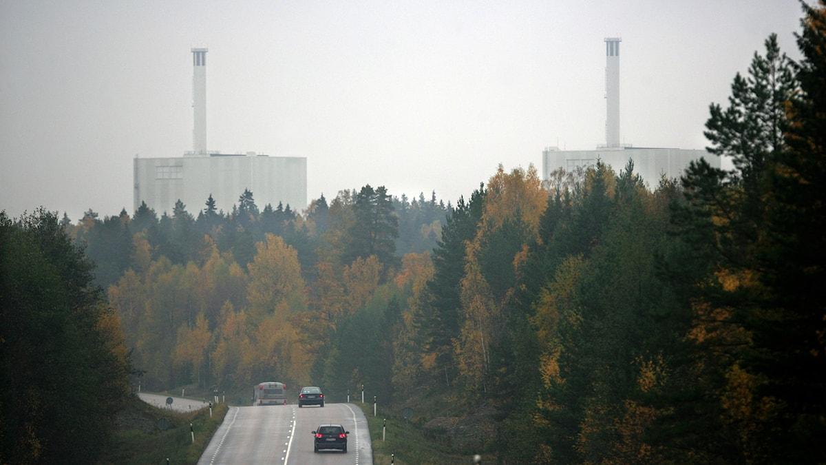 Forsmarks kärnkraftverk. Foto: Fredrik Sandberg/TT.